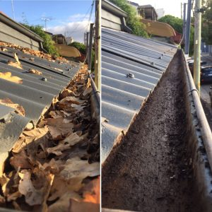 Gutter cleaning: it's that time of year! - Window Cleaning